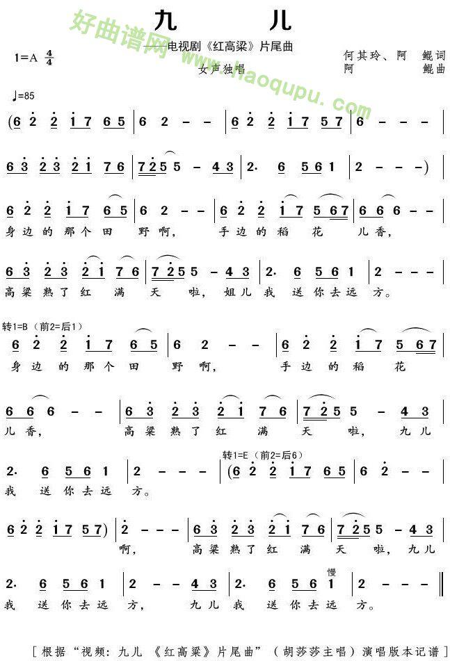 《九儿》歌曲简谱第1张